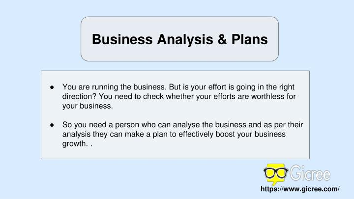 Business Analysis & Plans