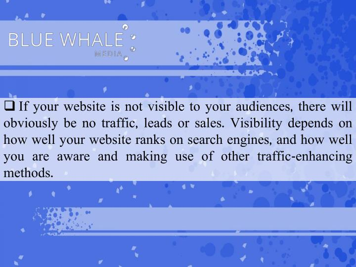 If your website is not visible to your audiences, there will obviously be no traffic, leads or sales. Visibility depends on how well your website ranks on search engines, and how well you are aware and making use of other traffic-enhancing methods.