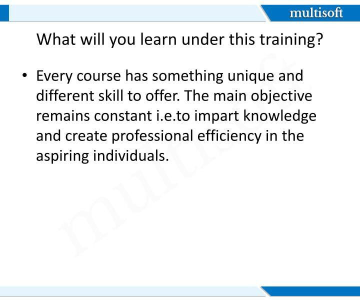 What will you learn under this training?