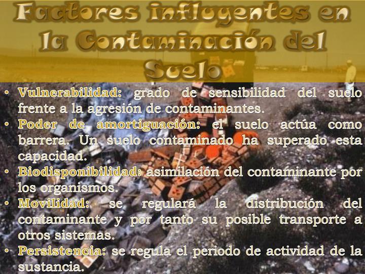Factores influyentes en la Contaminación del Suelo