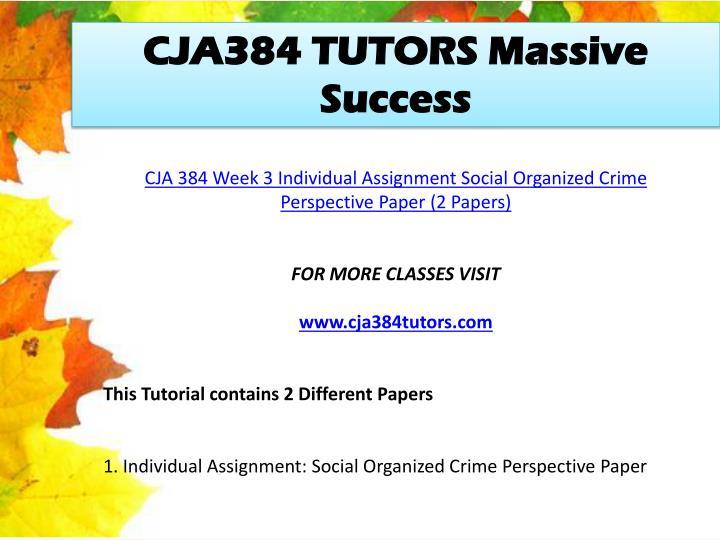 CJA384 TUTORS Massive Success