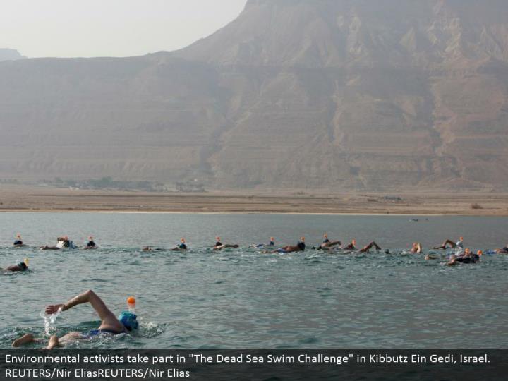 "Environmental activists partake in ""The Dead Sea Swim Challenge"" in Kibbutz Ein Gedi, Israel. REUTERS/Nir EliasREUTERS/Nir Elias"