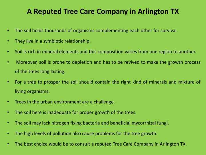 A reputed tree care company in arlington tx