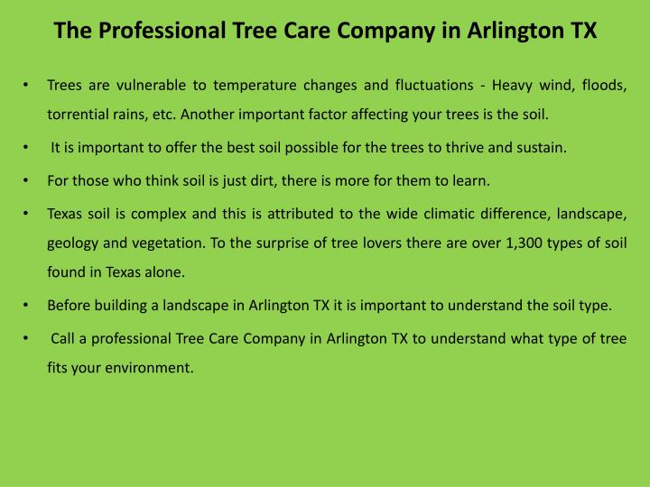 The professional tree care company in arlington tx