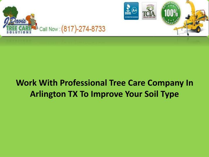 Work with professional tree care company in arlington tx to improve your soil type