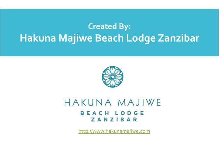http://www.hakunamajiwe.com