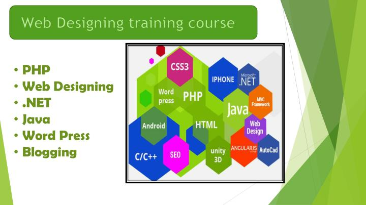 Web Designing training course