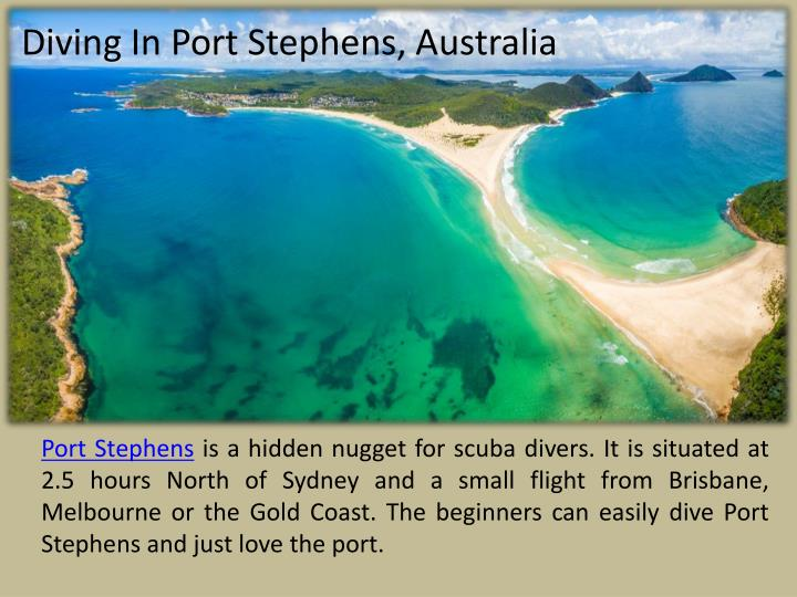 Diving In Port Stephens, Australia