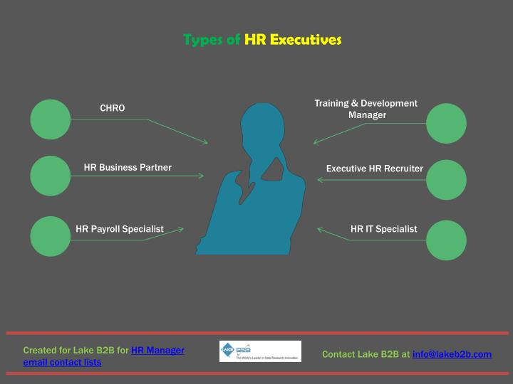 Types of HR Executives