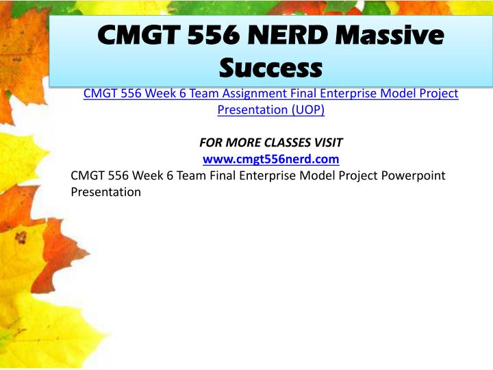 CMGT 556 NERD Massive Success