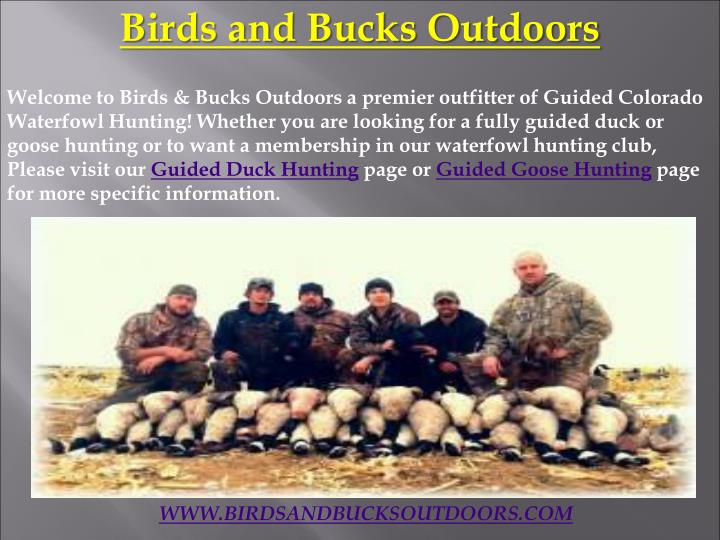Birds and Bucks Outdoors