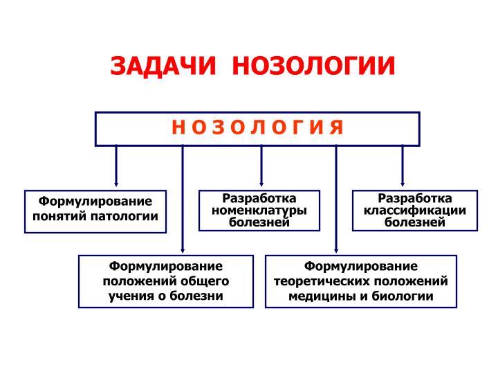 Формулирование понятий патологии