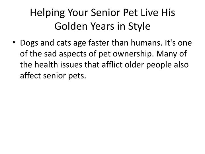 Helping your senior pet live his golden years in style1
