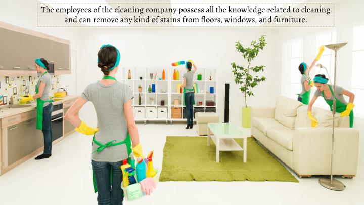 The employees of the cleaning company possess all the knowledge related to cleaning and can remove any kind of stains from floors, windows, and furniture.