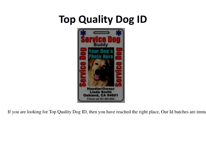 Top quality dog id