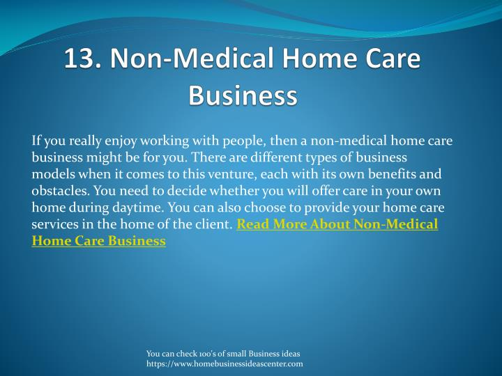 13. Non-Medical Home Care Business