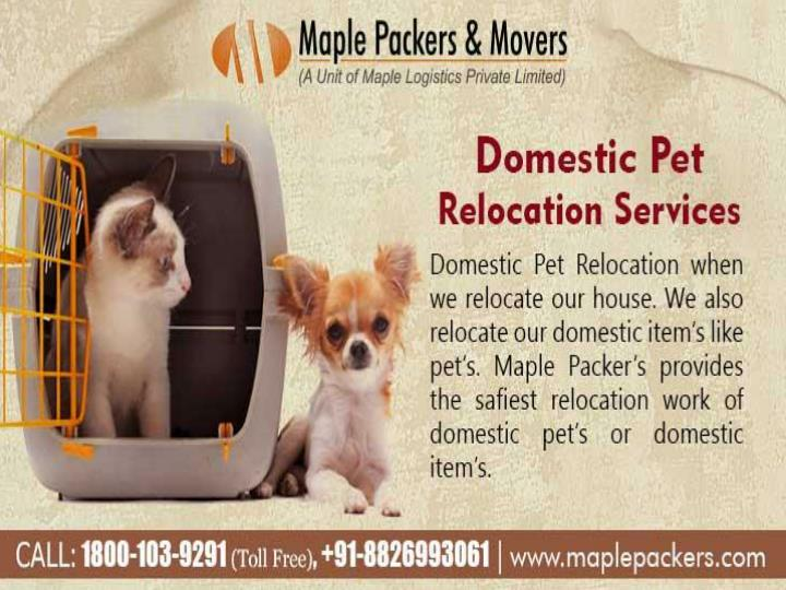 Packers and movers delhi maple packers and movers in delhi