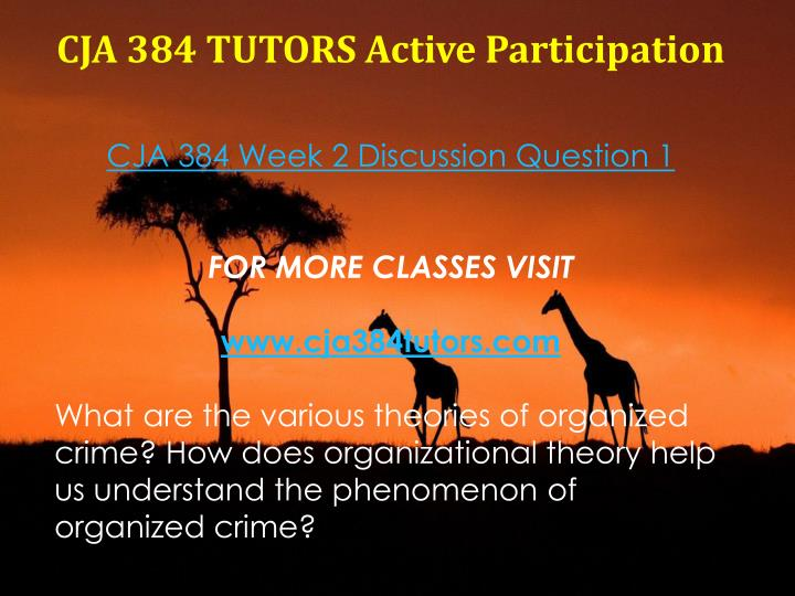CJA 384 TUTORS Active Participation