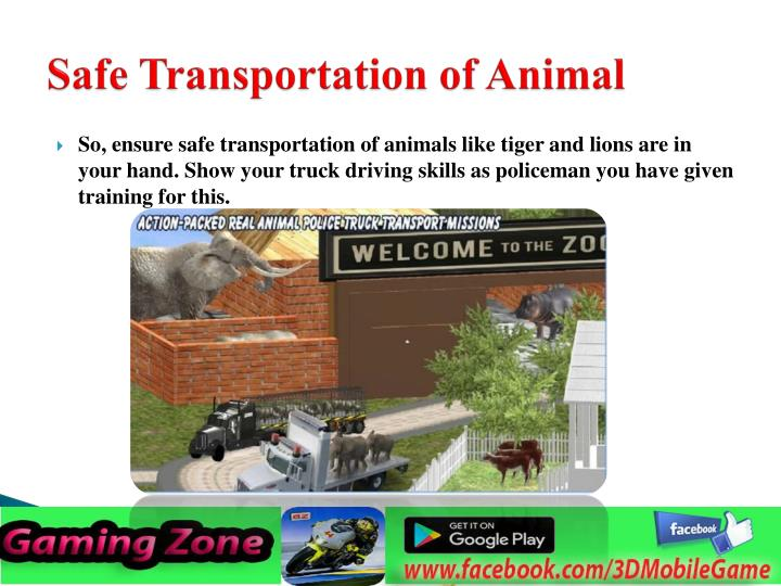 Safe Transportation of Animal