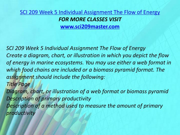 SCI 209 Week 5 Individual Assignment The Flow of Energy
