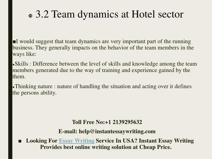 3.2 Team dynamics at Hotel sector