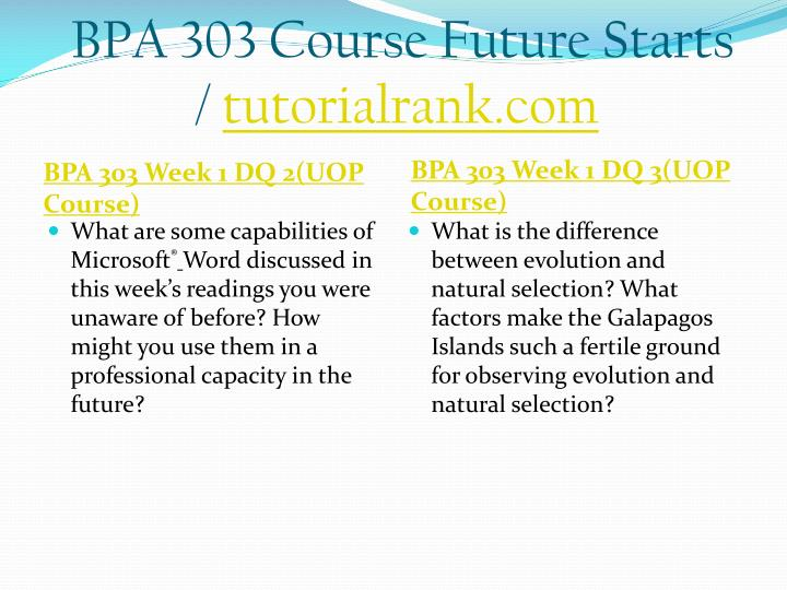 Bpa 303 course future starts tutorialrank com2