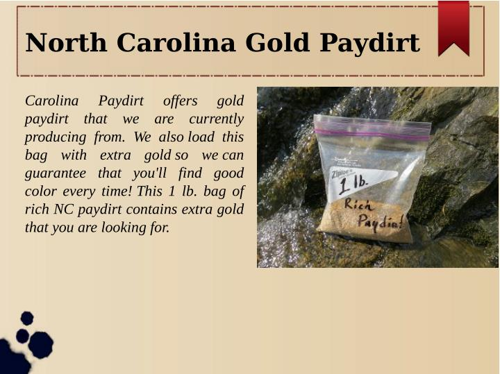 North Carolina Gold Paydirt
