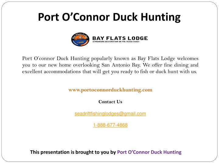 Port O'Connor Duck Hunting