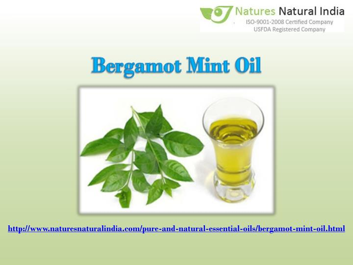 Bergamot Mint