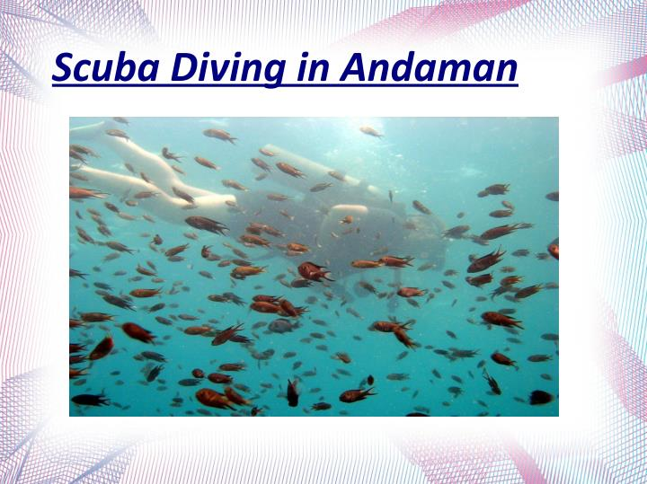 Scuba Diving in Andaman