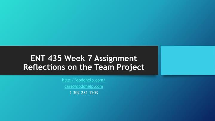 ENT 435 Week 7 Assignment Reflections on the Team Project