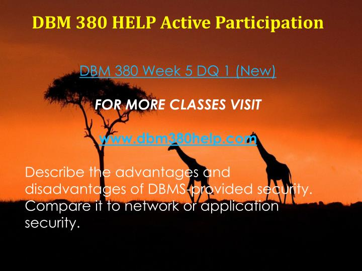 DBM 380 HELP Active Participation