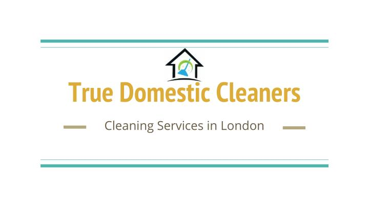 True Domestic Cleaners