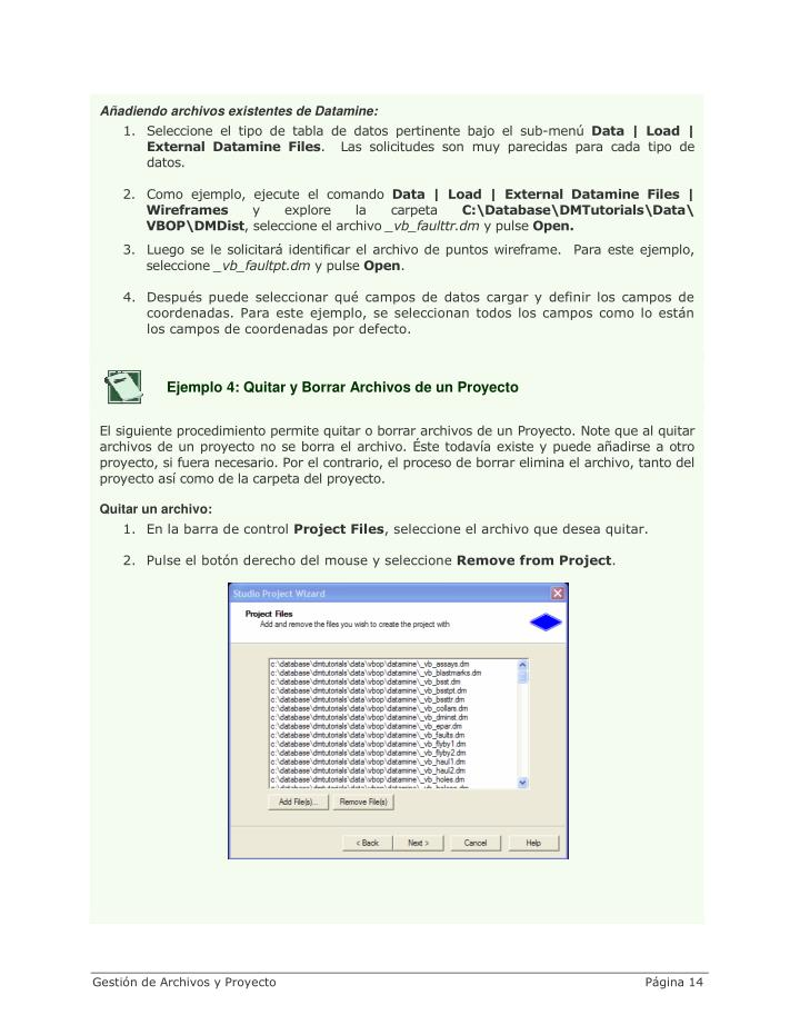 Añadiendo archivos existentes de Datamine: