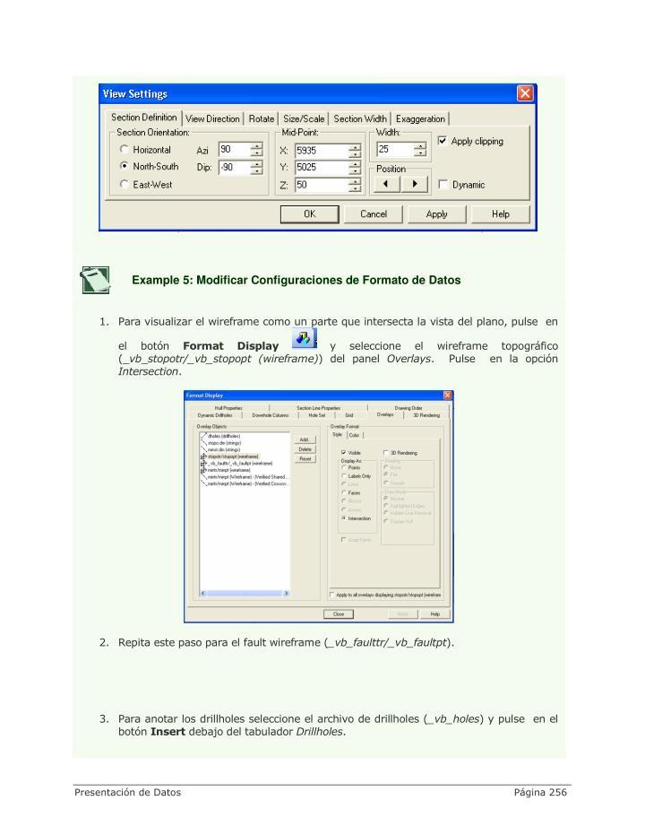 Example 5: Modificar Configuraciones de Formato de Datos