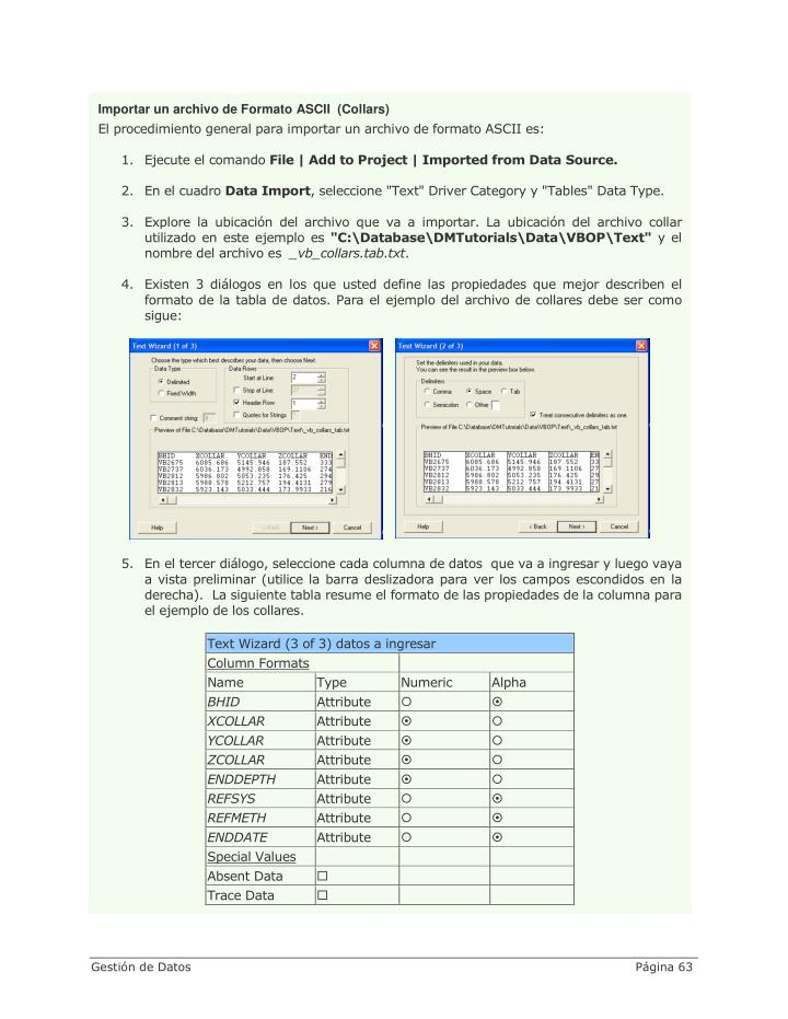 Importar un archivo de Formato ASCII  (Collars)