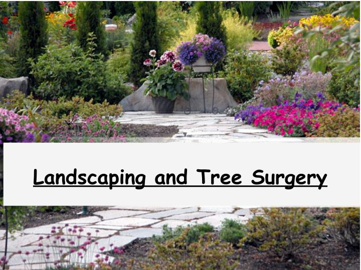 Landscaping and Tree Surgery