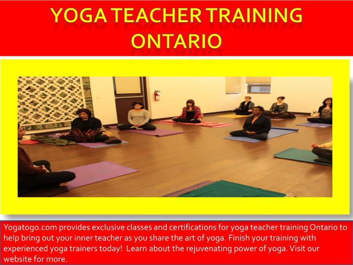 Yoga teacher training Ontario