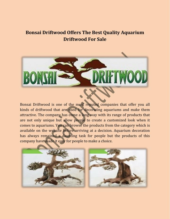 Bonsai Driftwood Offers The Best Quality Aquarium