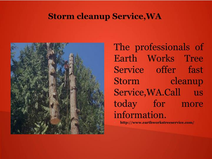 Storm cleanup Service,WA