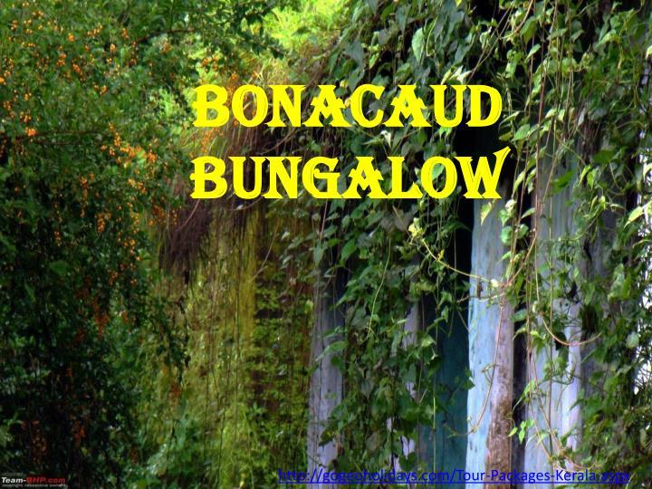 Bonacaud Bungalow