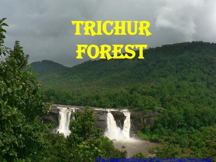 Trichur