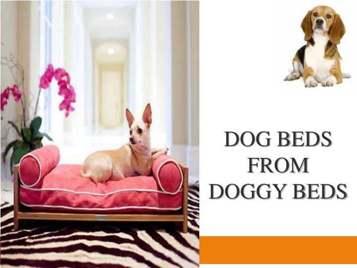 dog beds from doggy beds