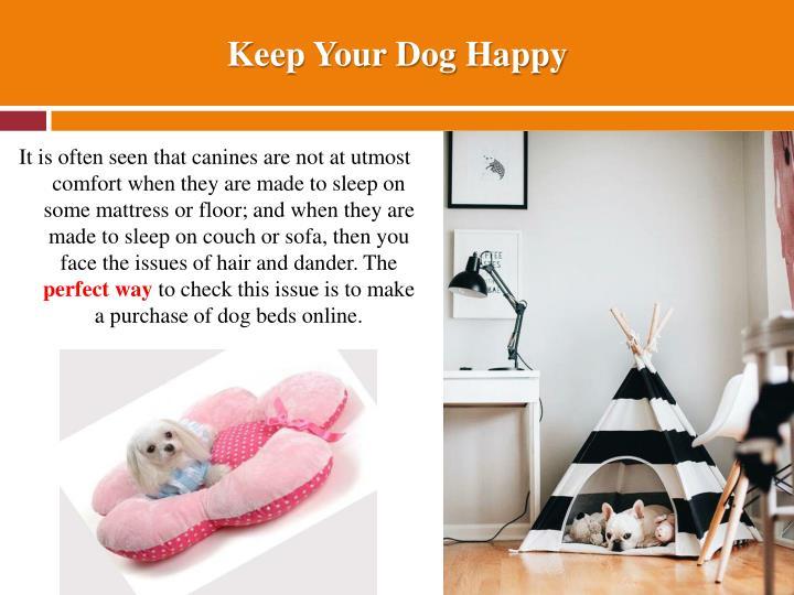 Keep Your Dog