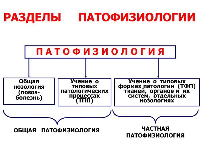Общая нозология