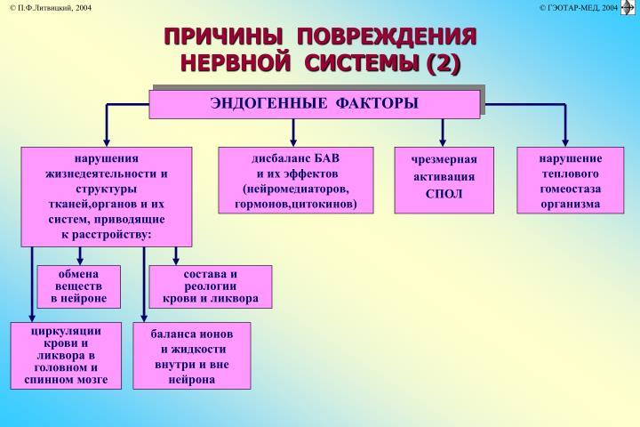 ПРИЧИНЫ  ПОВРЕЖДЕНИЯ  НЕРВНОЙ  СИСТЕМЫ (2)