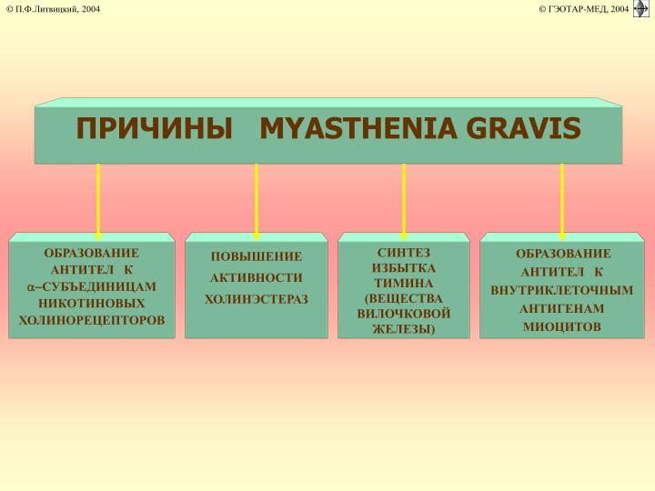 ПРИЧИНЫ   MYASTHENIA GRAVIS