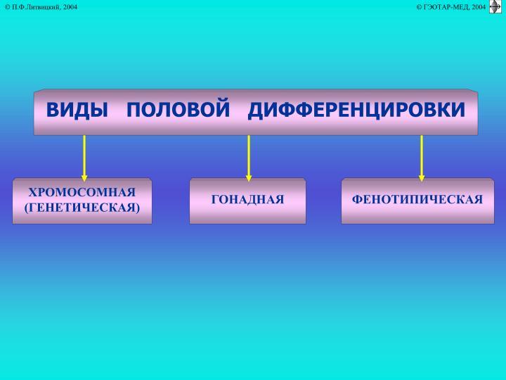 ВИДЫ   ПОЛОВОЙ   ДИФФЕРЕНЦИРОВКИ