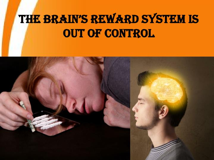 The Brain's Reward System Is out of Control