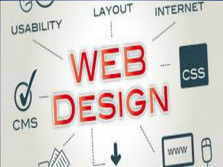 Propessional web design company india 7444348